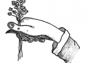 "Ilustrácia - Zber pod ""palec"""